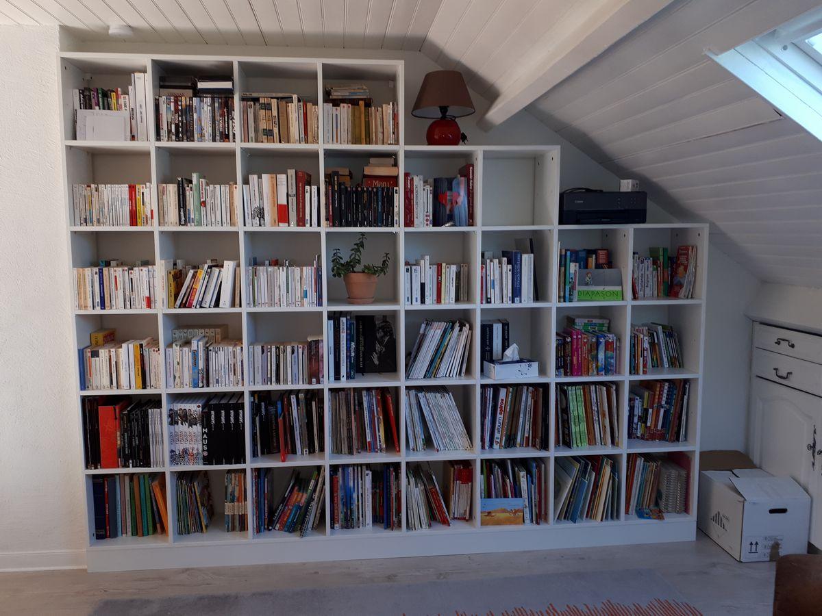 Bibliothèque à la Chapelle sur Erdre